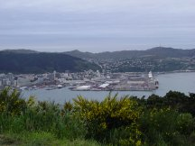 wellington_view_02.jpg (8958 bytes)